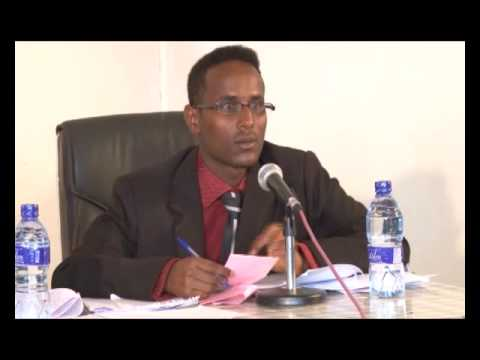 Debate on judicial independence in Ethiopia