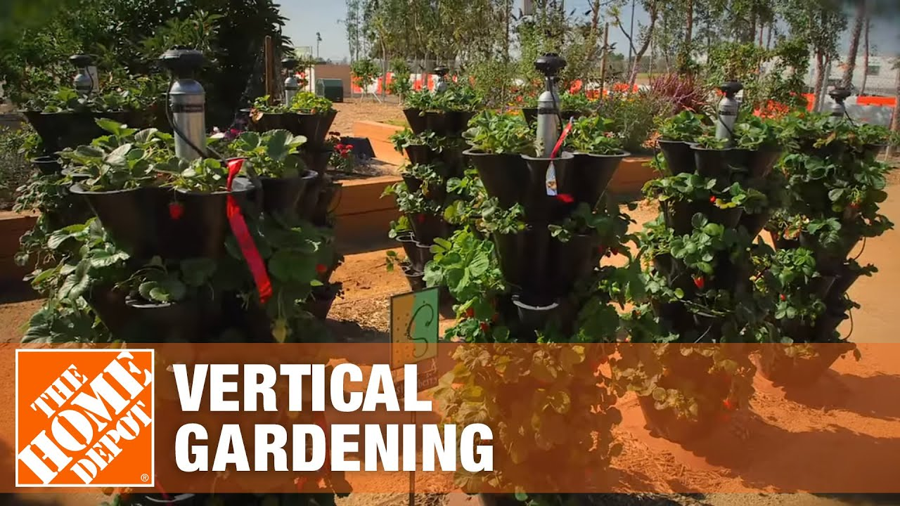 Gardeniere Teena Discusses Vertical Gardening The Home