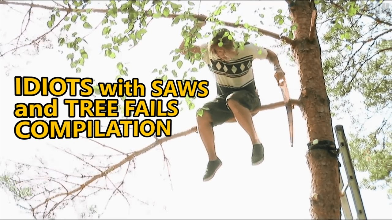 Chainsaw fails and idiots cutting trees  FAIL COMPILATION about how not to  remove trees  Part 4
