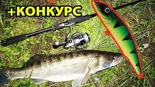Ловля судака ночью на воблер.  Рыбалка в августе на реке Обь.