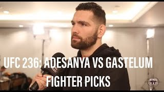 UFC 236: Israel Adesanya vs. Kelvin Gastelum Fighter Picks
