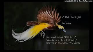 Perempuan Papua (2017) [Lewa West Papua] - Tarvin Toune , Yung D , Ikzie & Dr. Wiz [Download free mp - Stafaband