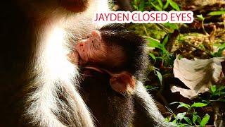 JAYDEN CLOSED HIS EYES.# monkey
