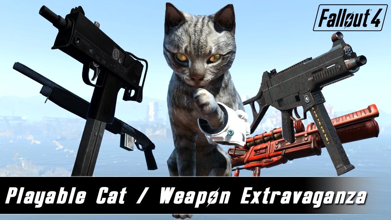 how to get the cat in fallout 4