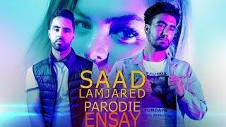 PARODIE: Saad Lamjarred - Ensay / سعد المجرد - إنساي / BIG SHIFT