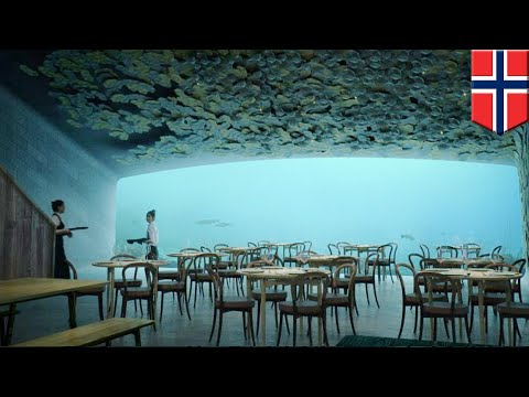 Underwater dining: Norway planning Europe's first subsea restaurant - TomoNews