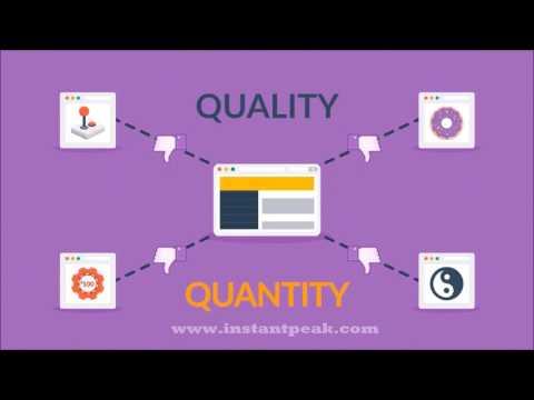 Best SEO Company in Virginia | Instant Peak | Digital Marketing VA