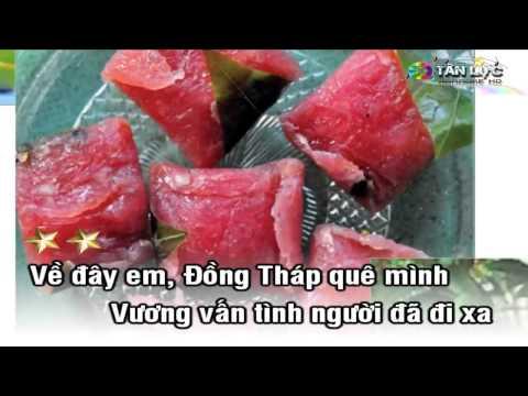 Karaoke Nhạc Sống Đồng Tháp Quê Mình HD Melody Beat   YouTube;cle