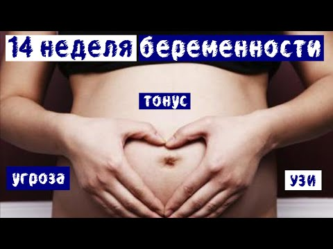 14 неделя беременности: угроза, тонус, УЗИ и дюфастон