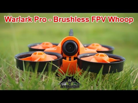 Warlark Pro Mini Brushless FPV Whoop Outdoor FPV Whooping in China
