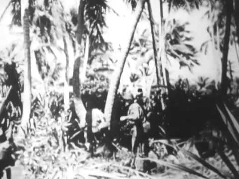 Raids On Makin, Mili and Wotje Islands and Kwajalein Harbor (1944)
