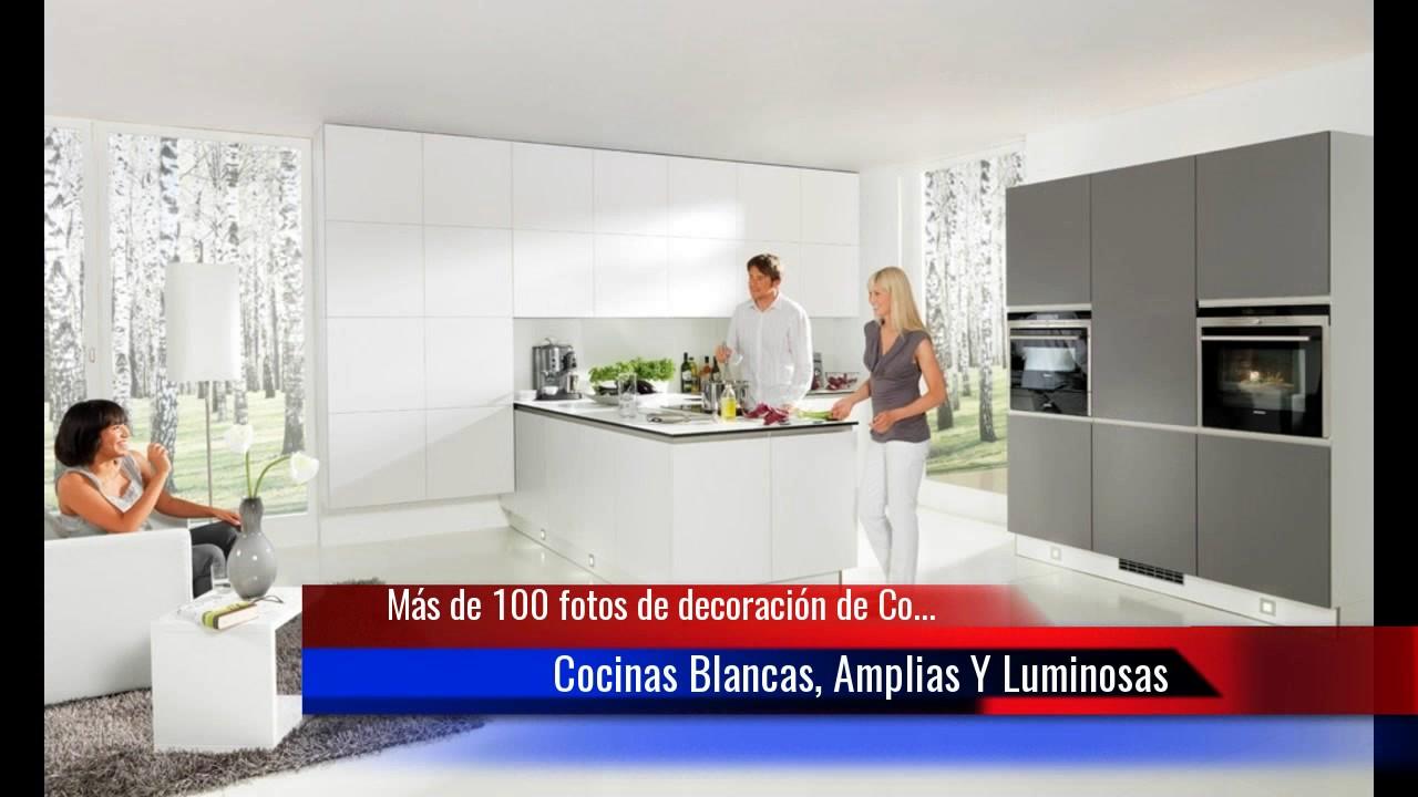 De 100 fotos de decoraci n de cocinas blancas y grises for Decoracion de cocinas modernas fotos