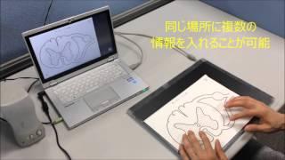 音声触図学習システムで脊髄の横断面を学習している様子