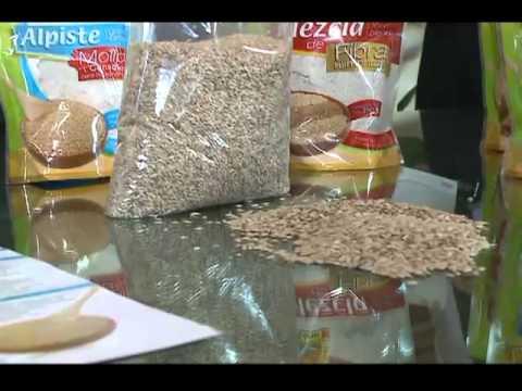 beneficios y contraindicaciones de la harina de alpiste