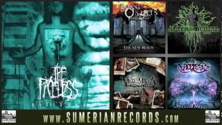 The Faceless - An Autopsy