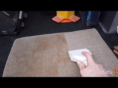 Cleaning the Dirtiest Couch Cushion in the World :)