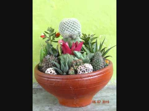 Decoracion de cactus youtube for Cactus decoracion