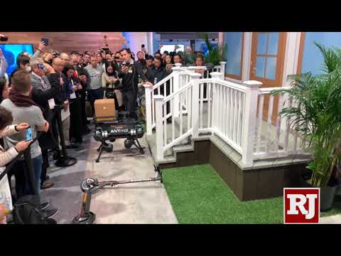 CES 2019: Continental robotic delivery dog