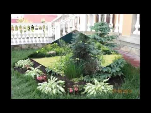 видео: Прекрасный дизайн садового участка своими руками. Такой ландшафтный дизайн сада завораживает