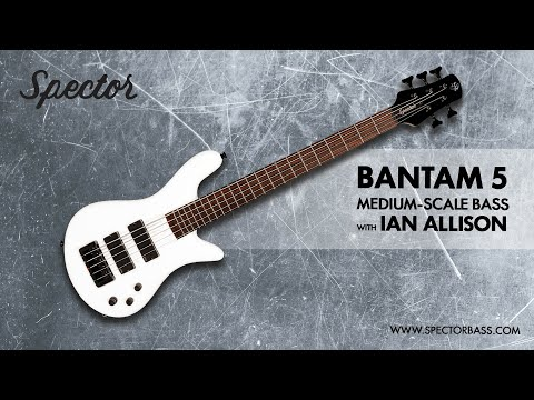 Spector: Bantam 5 Medium-Scale Bass with Ian Allison