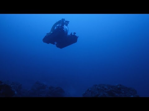 Into the Deep Unknown | bioGraphic