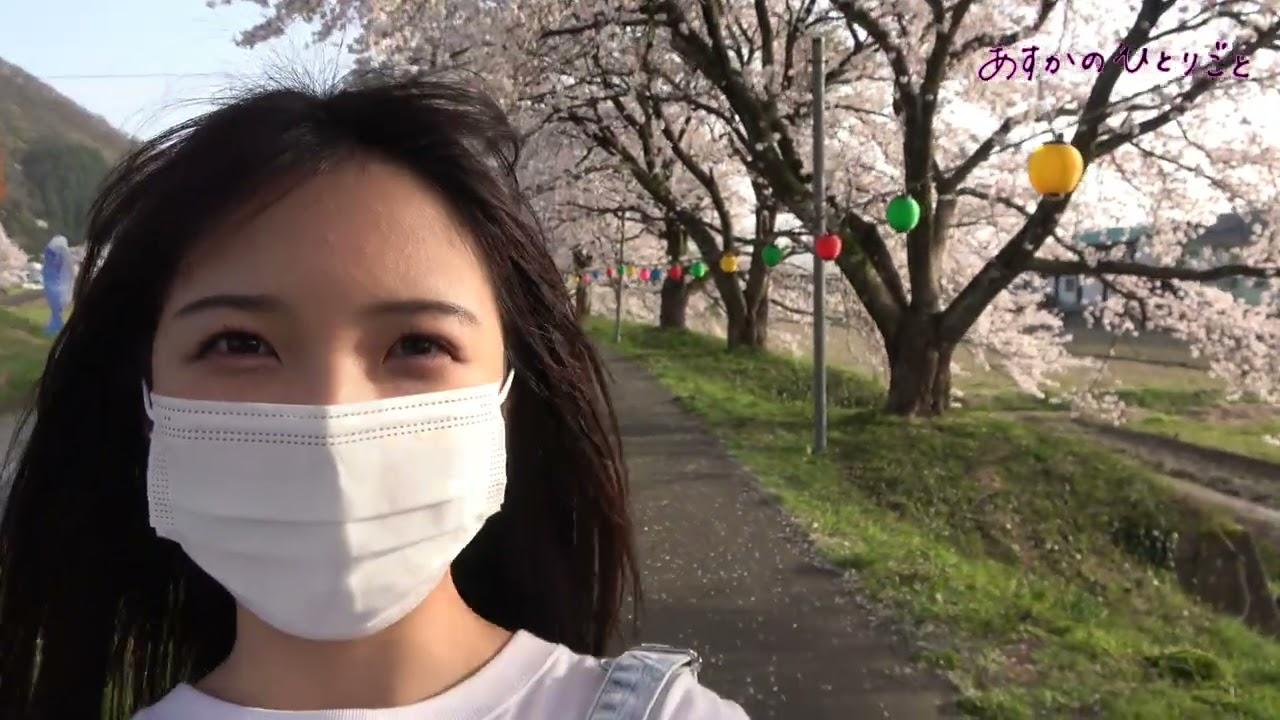 桜を見てきたよ~
