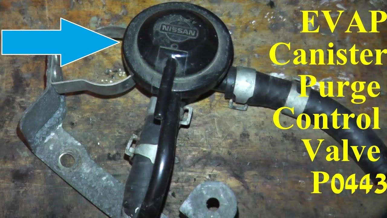 hight resolution of how to test and replace evap canister purge control valve p0443
