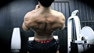 Chest and Back Training 101