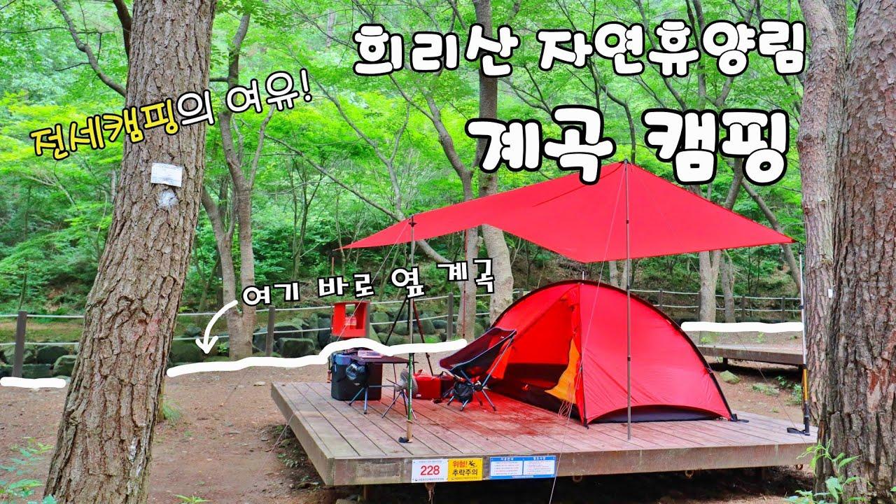 시원한 휴양림 캠핑 / 계곡 물소리 좋고 그늘도 많고 이쪽 데크 자리 추천합니다. 그리고 전세캠핑!