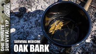 Oak bark - one minute survival tip