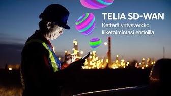 Telia SD-WAN - Ketterä yritysverkko liiketoimintasi ehdoilla