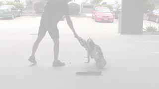 Smartie Portable Folding Electric Wheelchair