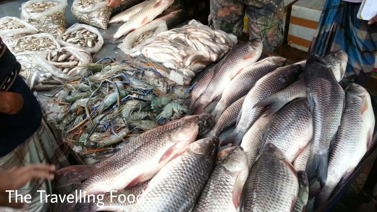 Fish Meals Near Me