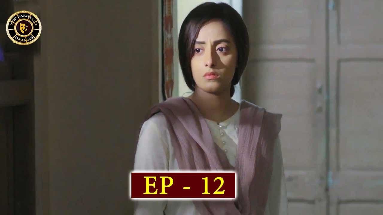 Haiwan Episode 12 - Top Pakistani Drama