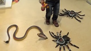 VLOG поход в детский магазин СМИК игрушки детская площадка Сhildren's toy store play yard(, 2015-04-16T17:03:33.000Z)