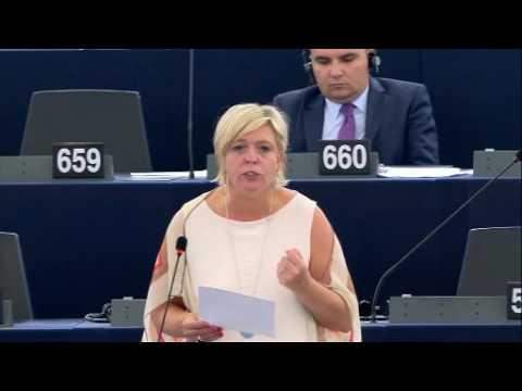 Hilde Vautmans 13 Sep 2016 plenary speech on EU relations with Tunisia