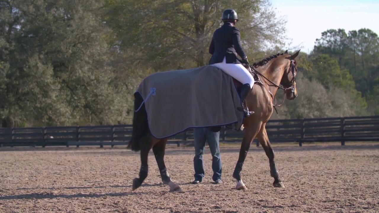 equine health revi due - 1280×720