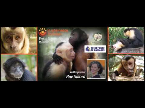 Vegan Spiritual Retreat at Jungle Friends Primate Sanctuary with speaker Rae Sikora