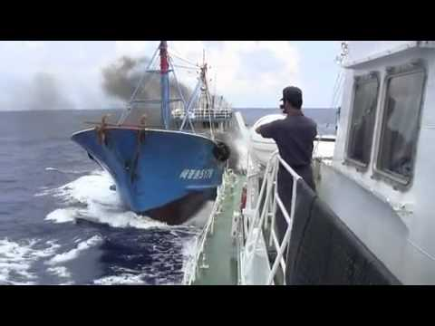 Chinese fishing boat rushed. In the vicinity of Senkaku Islands. 【尖閣ビデオ】