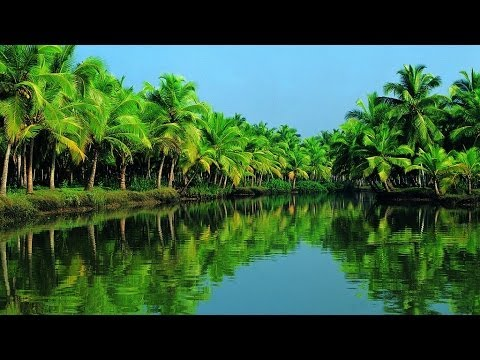 Kerala | India | World Travel Studio