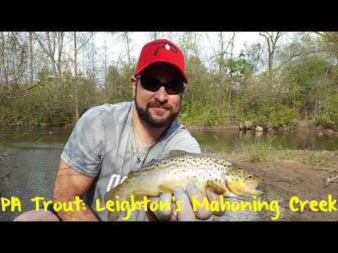 Pennsylvania Trout: Leighton's Mahoning Creek