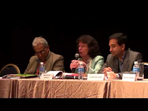 2013 Asia Research Institute - Rethinking Asian Part 6