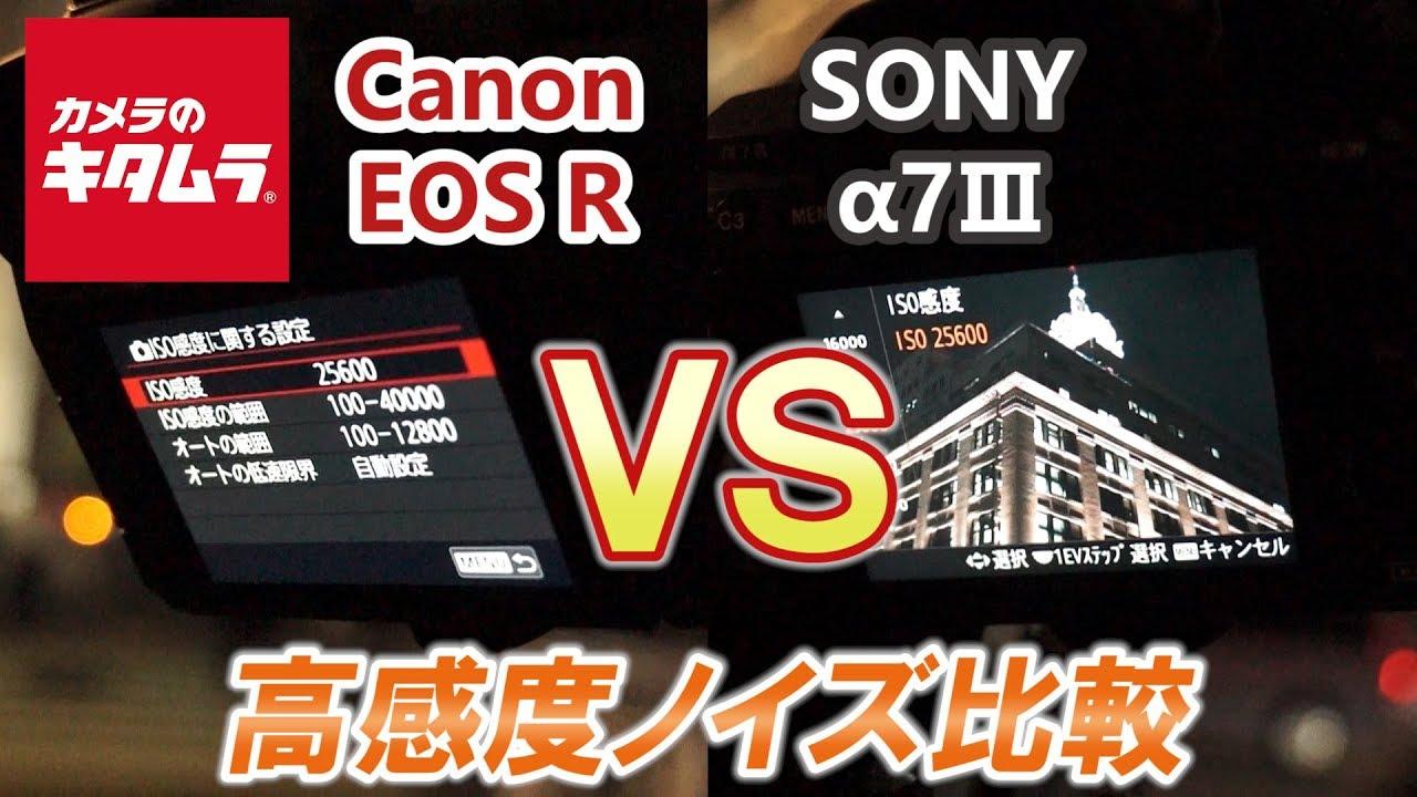 【カメラ性能比較】ソニー α7III 対 キヤノン EOS R (高感度ノイズ編)