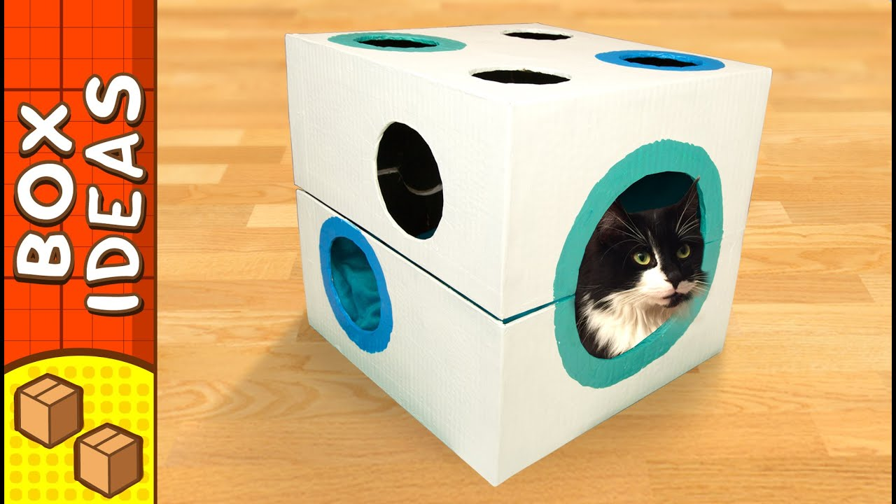 Diy cat bed dice craft ideas for kids on box yourself for How to make a cat toy out of a box