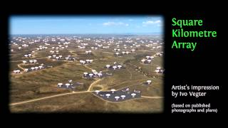 Scary bananas: How environmental exaggeration harms emerging economies: Ivo Vegter at TEDxCapeTown