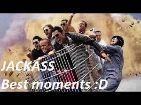 Best Jackass Compilation !!!!! 🤣🤣🤣🤣🏅