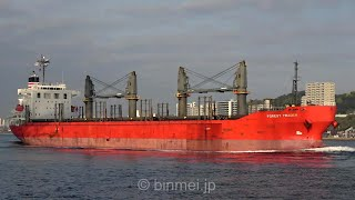FOREST TRADER - NYK BULK & PROJECTS CARRIERS bulk carrier