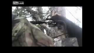 c медведем на дереве