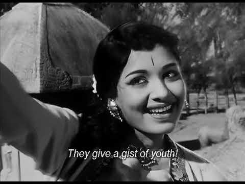 Server Sundaram 1964 Tamil Movie  Nagesh, Muthuraman,kr Vijaya,k Balachandar   YouTube
