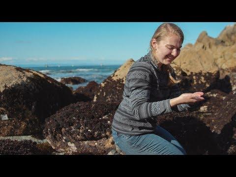 Stanford Undergrad Profile: Laura Anderson